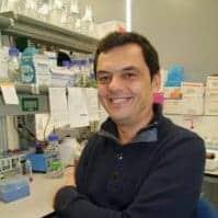 Article du Dr Erceg sur les cellules souches pluripotentes